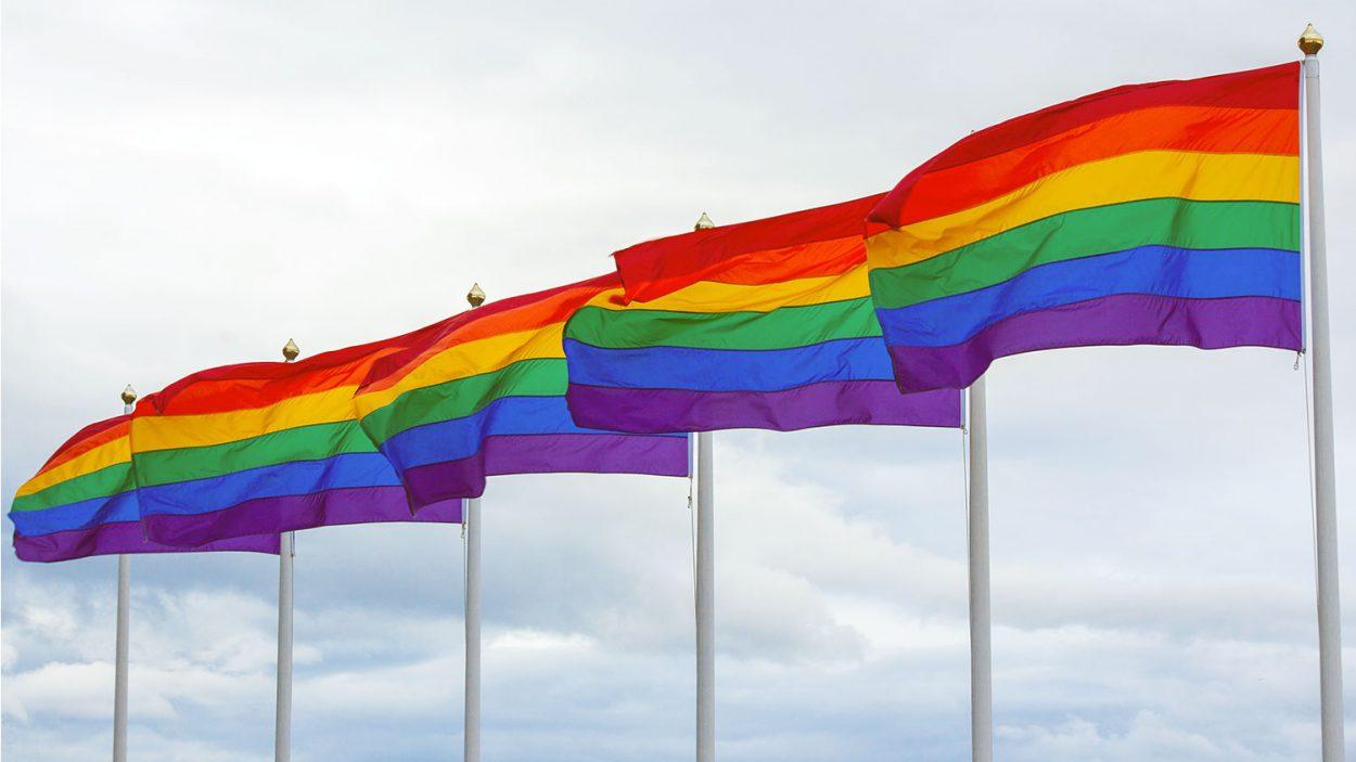 LGBT+ Rainbow Flags