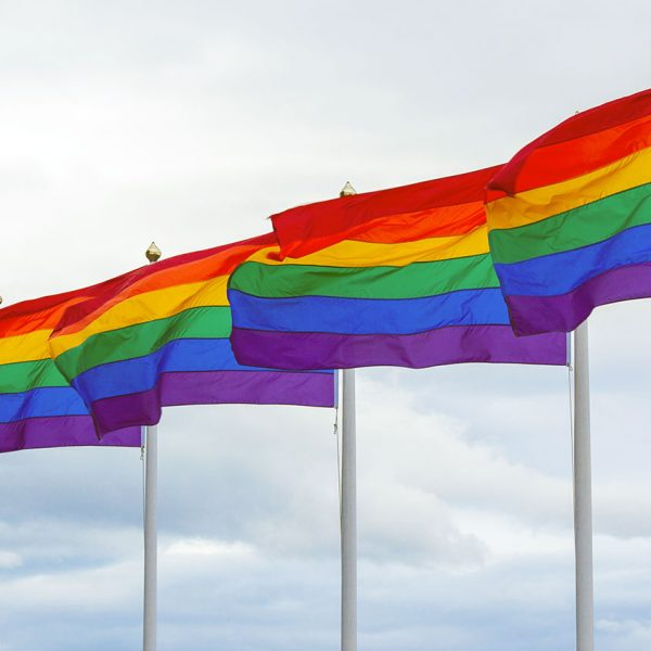 LGBT+ Rainbow Flags